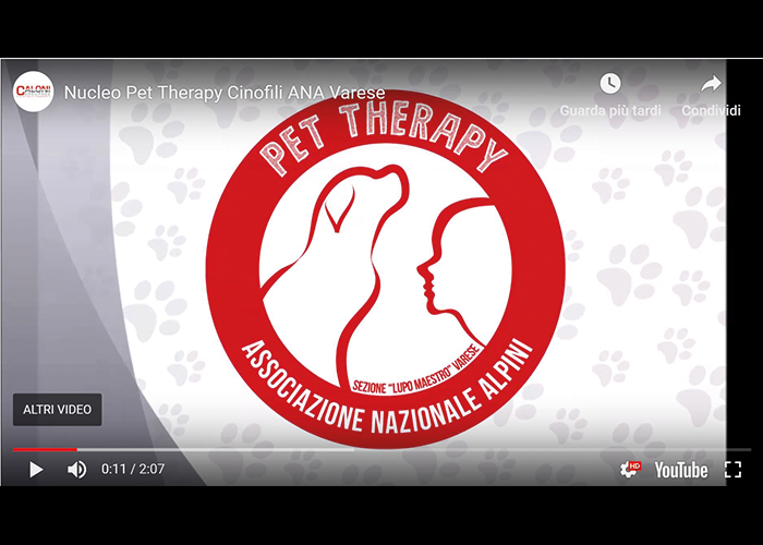 Pet Therapy | Caloni Groupage