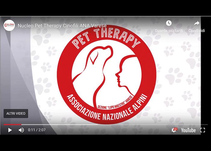 Pet Therapy | Caloni Groupage